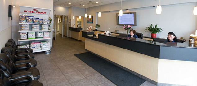 Roscoe Village Animal Hospital | Reception