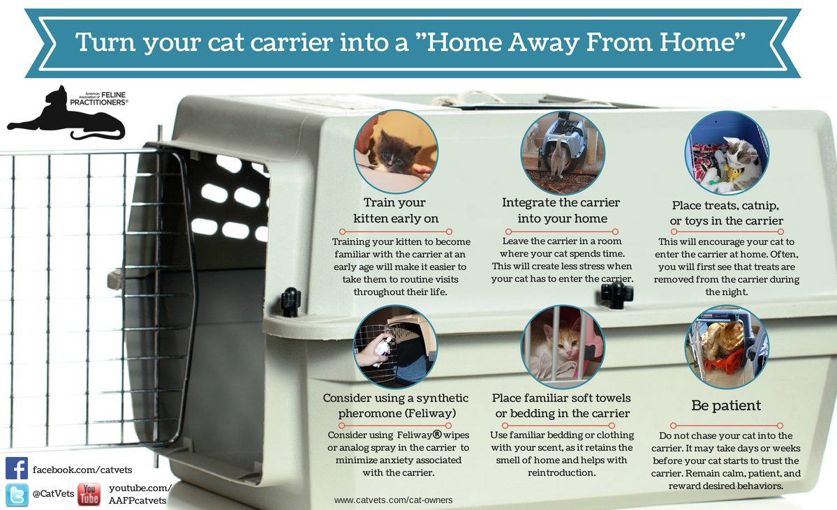 Home Away From Home Cat Carrier